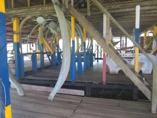 Hostal y Playa Los Tucanes- Punta san Pedro B/tura