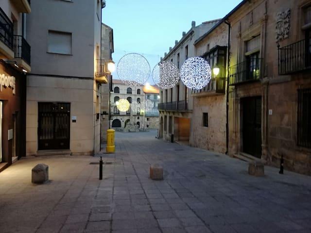 Mini loft centro de Soria.