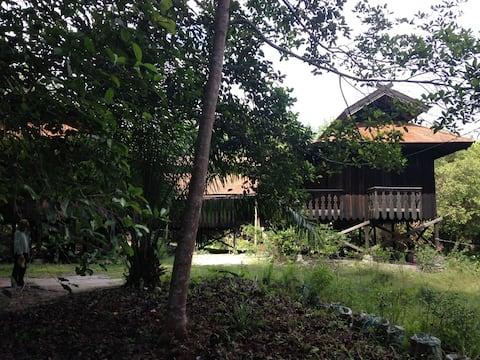 Rumah Betang Di Sei Gohong