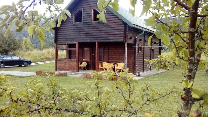 Chalet Breza - Kolašin - House