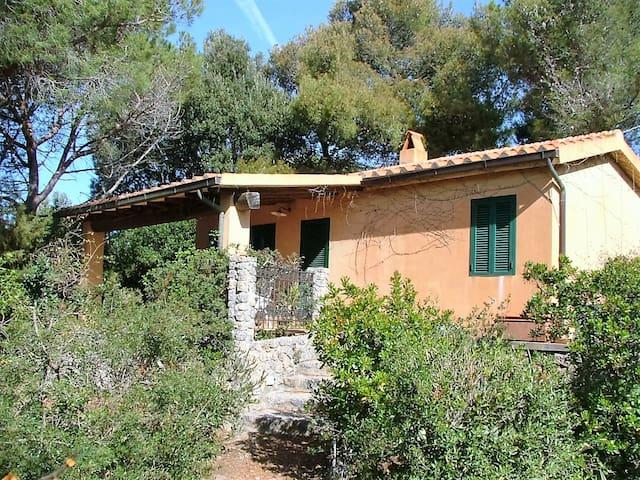 Jolie maisonette de charme toscane - Ansedonia - 단독주택