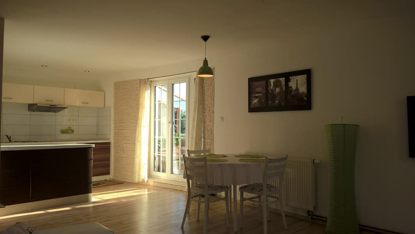 Beautiful and spacious flat with a terrace - České Budějovice - 公寓