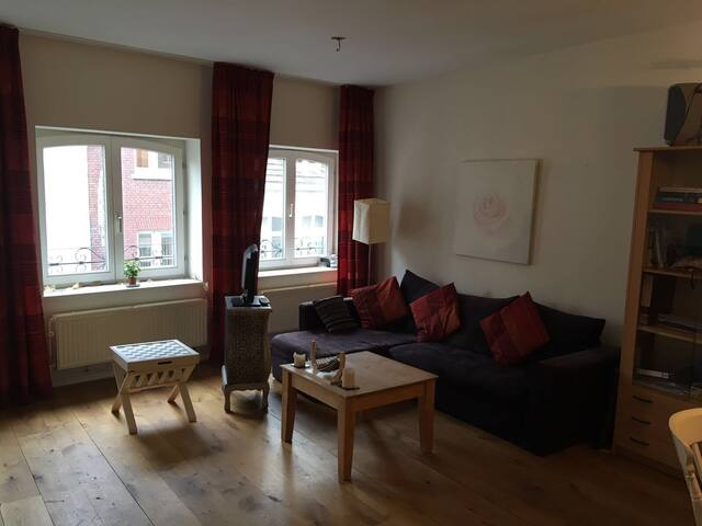 Spacious, warm apartment right in the center ! - Maastricht - Leilighet