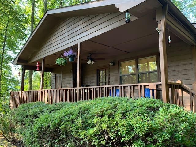 Summer Trees  - Mountainside Cabin