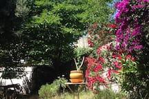 Le jardin au rez de chaussée, sauvage avec la terrasse où l'on prend son thé