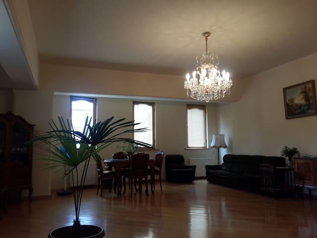 Здается Комната в центре г. Гори - Gori - Bed & Breakfast