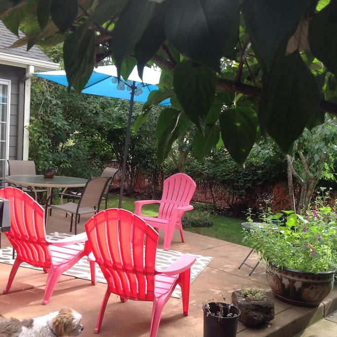 Shared Patio Space