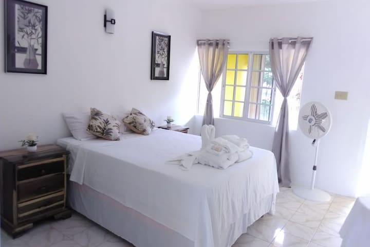 Beautiful Negril Studio Apartment