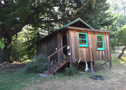 Redwoods Cabin by the lake