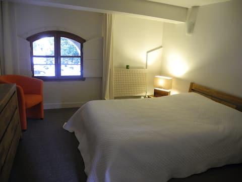 Cocoon apartamentai 50m2 Pau centras su vaizdu į pilį