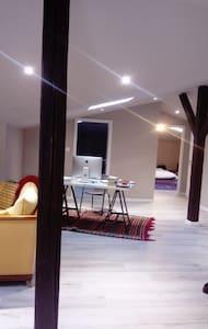 Appart, type loft, proche centre ville et gare - Mulhouse