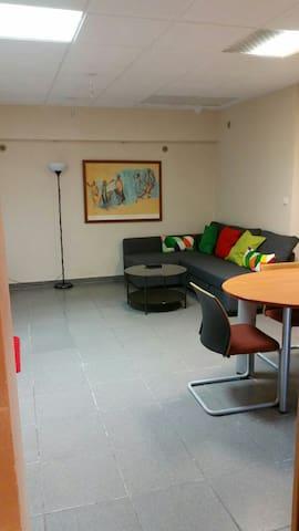Loft avec salle de réunion d'affaire charmant - Charenton-le-Pont - Huis