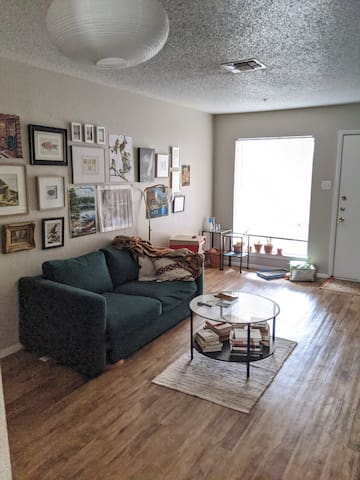 Cozy apartment in Austin's east side