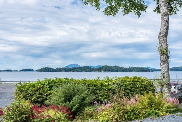 View from A Water's Edge of Mt. Edgecumbe Volcano