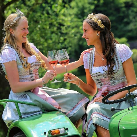 """Ellenz Poltersdorf Weinfest's last weekend in July and the first weekend in August  """" Why Not Join Us? """""""