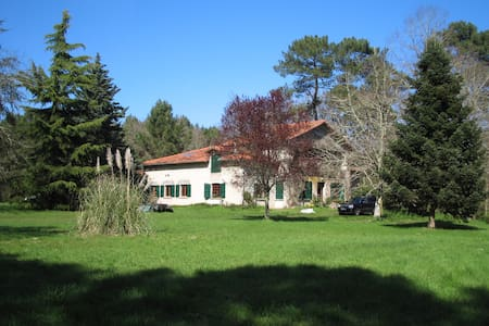 Rare forest house, untouched nature, swimming lake - Sos - Dům