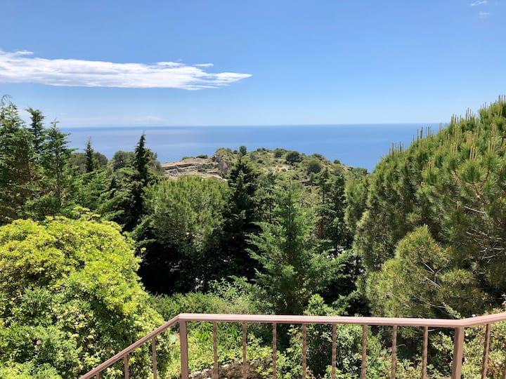 Beautiful Villa minutes from Monte-Carlo