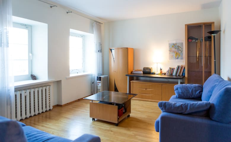 Large Modern flat in Old Town - Vilnius - Daire