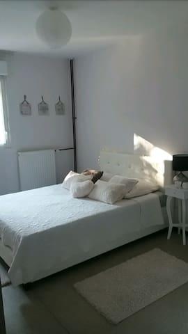 Chambre dans T4 avec grand balcon - Besançon - Appartement