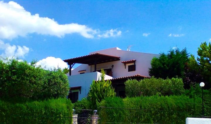 Stonewood home garden, Trikorfo Chalkidiki