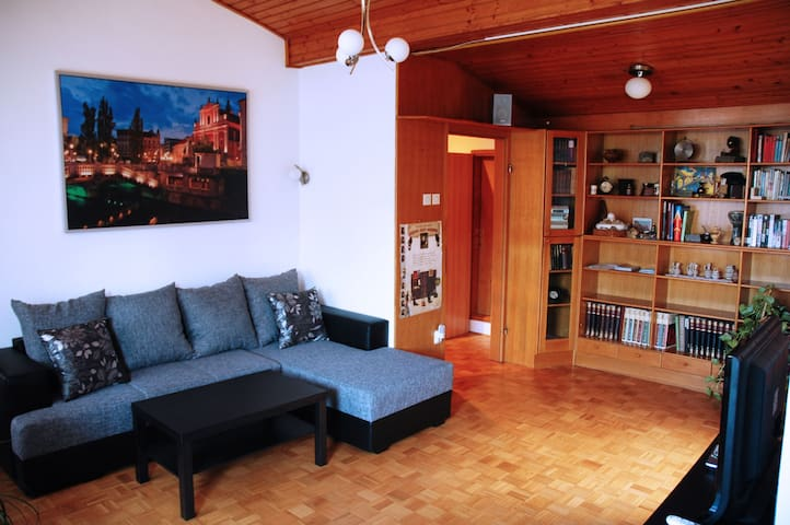 Ljubljana Spacious apartment with a large terrace - Ljubljana - Lägenhet