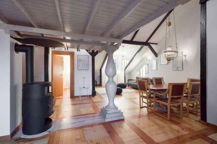 The stone column, just like those that adorn Ljubljana's Triple Bridge, taking pride of place in the living room.