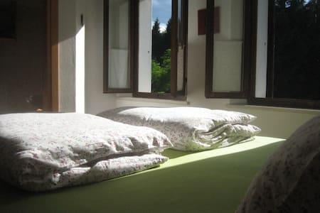 triple room in the woods - Fianema - Inap sarapan
