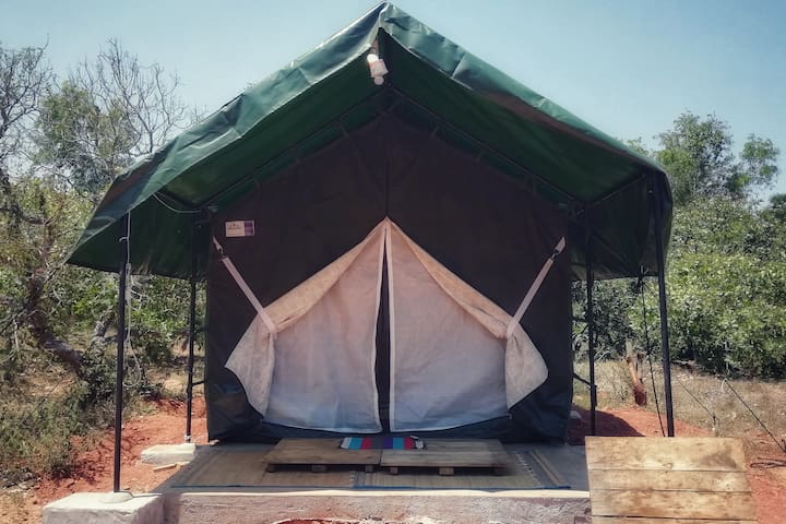 Beyond Homes - 'A Glamping Experience'