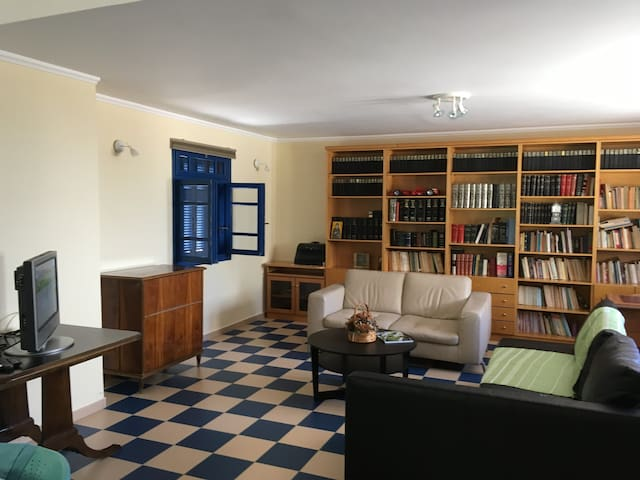 Modern and spacious apt in Chora!