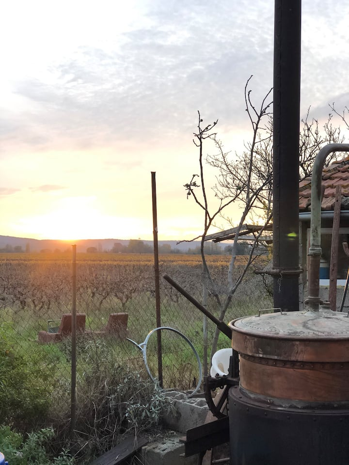 La Bastide de la Goutte, distillerie artisanale