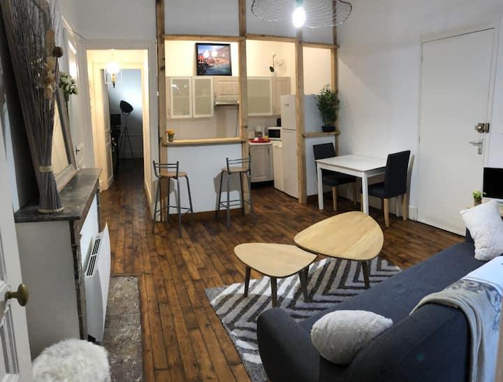 Appartement typique champenois avec petit jardin
