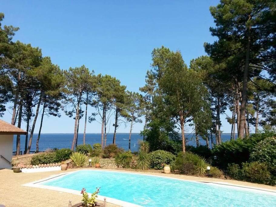 Maison avec piscine vue sur le lac houses for rent in for Piscine biscarrosse