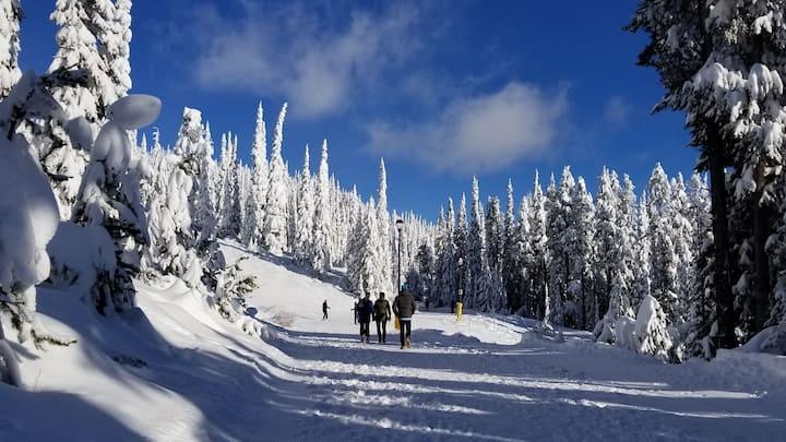 2 BD 2 BTH - Easy Ski in Ski out - Walk to Village