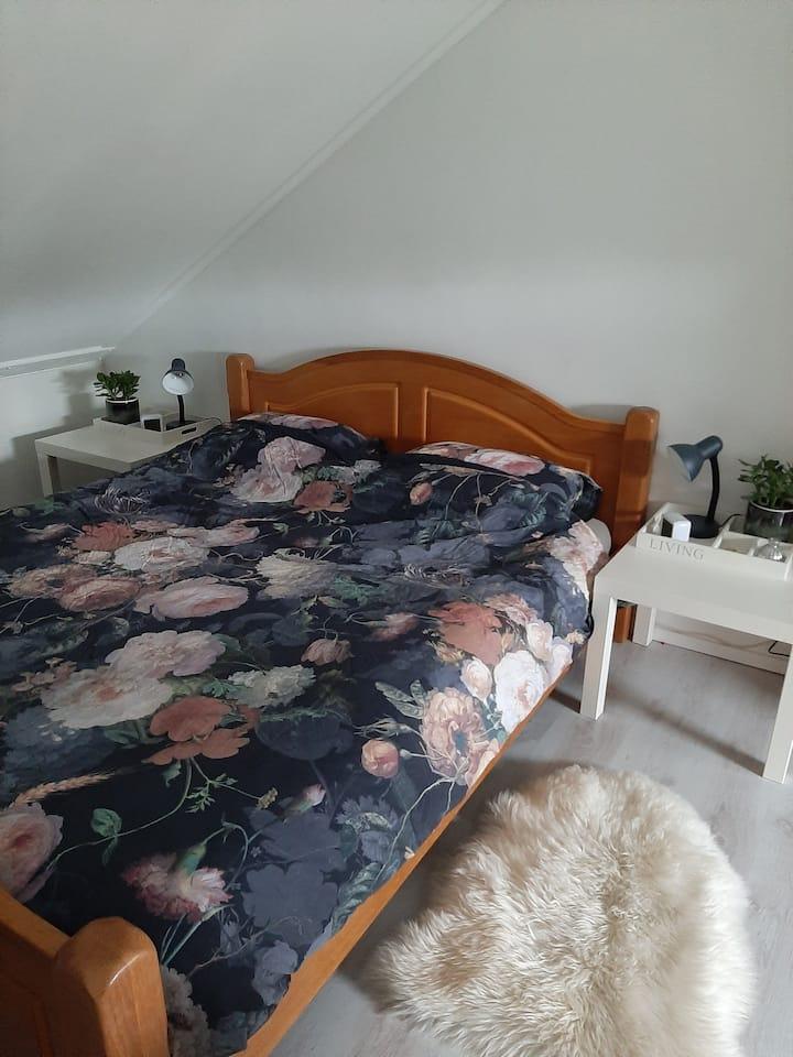 Ruime zolderkamer in Assen met tv en ontbijt