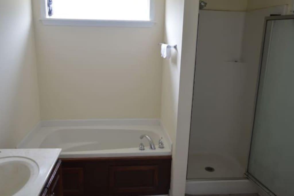Shower and Bath tub in master bath