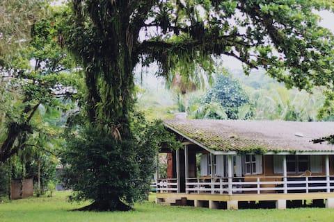 Casa retirada em frente ao rio Tagaçaba