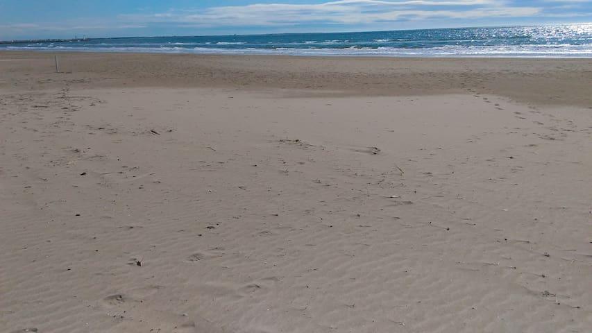 Studio à deux pas des plages