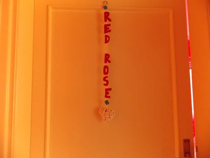 Red Rose By B & B Verdemare Pisa