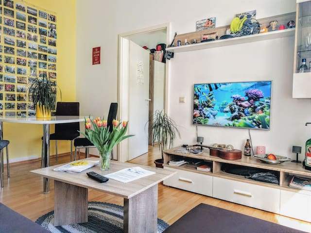 Modern, gemütlich, innenstadtnah – komplette Whg. - Karlsruhe - Apartment