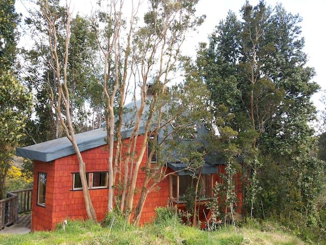 Cabaña Dominga, un Domo Geodésico en el bosque
