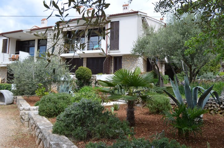 Appartment Palma&Pino - Cres - Apartment