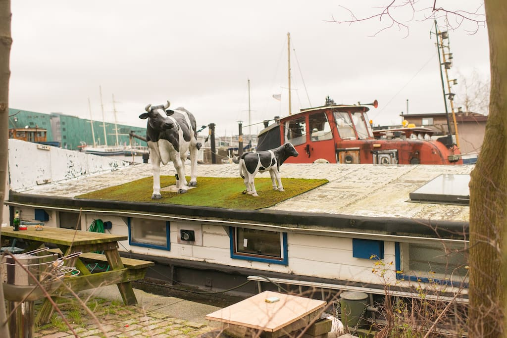 I won't be there, but these 2 cows on the roof will keep you company ;)