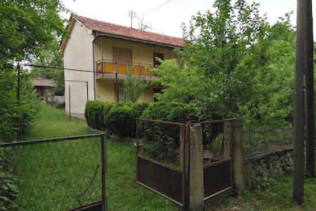 Villa Frose