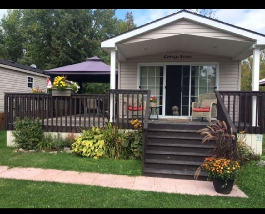 Rooms For Rent In Campbellford Ontario
