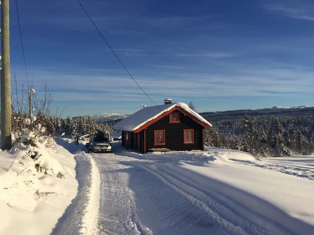 Mountain timber cottage