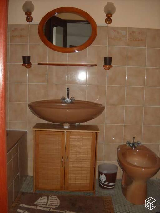 Salle de bain(vasque et bidet)