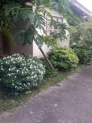 nice flower - Tambon Pae-ra - Casa