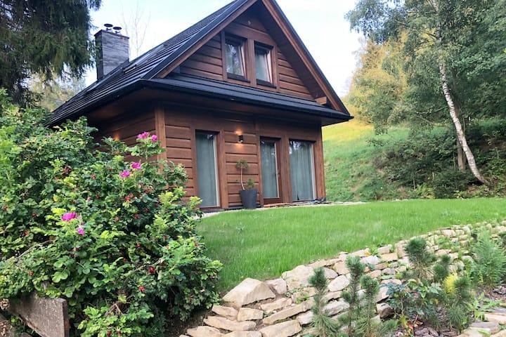 Chatta Łapszanka - wymarzony dom nad potokiem
