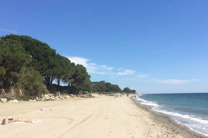 Corse : superbe appart 50m de la plage!!!