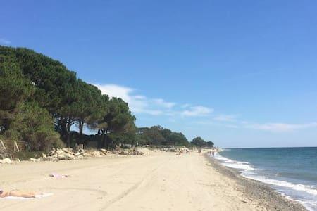 Corse : superbe appart 100m de la plage!!! - Santa-Lucia-di-Moriani - Huoneisto